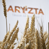 Aryzta-Investor legt Alternative vor