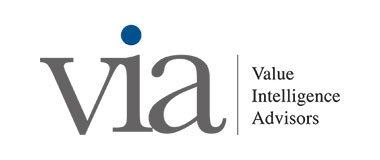 Value Intelligence Advisors GmbH (VIA)